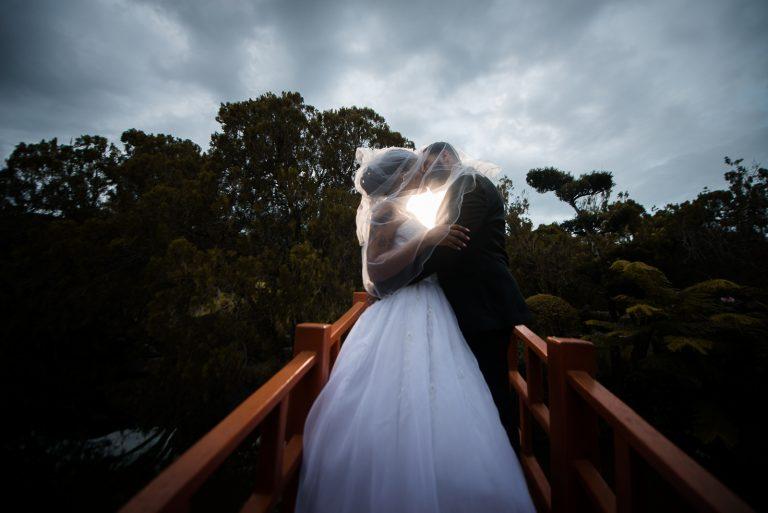 Hermosa sesion de novios en el Jardin Botanico de Santo Domingo de Tamy y George